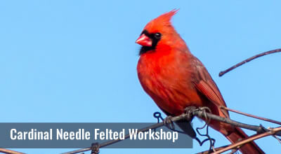 Learn how to Needle felt a portrait of one of our favorite birds, the Cardinal. Colour theory and blending, needle choice and technique.